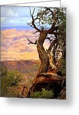 Canyon Vista 1 Greeting Card