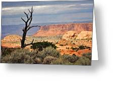Canyon Vista 2 Greeting Card