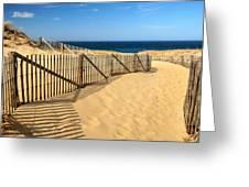 Cape Cod Beach Greeting Card