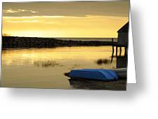 Cape Cod Delight Greeting Card by Luke Moore