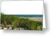 Cape Cod Dunes Greeting Card