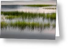 Cape Cod Marsh Greeting Card