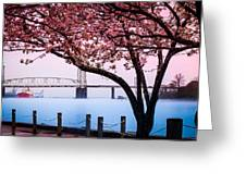 Cape Fear Of Wilmington Greeting Card