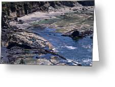Cape Foulweather 1 Greeting Card