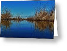 Cape Hatteras Lighthouse Water Reflection 2 3/01 Greeting Card