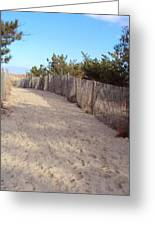 Cape Henlopen 5 Greeting Card