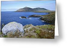 Cape Horn National Park Patagonia Greeting Card