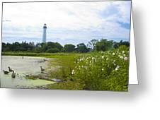 Cape May Lighthouse - New Jersey Greeting Card