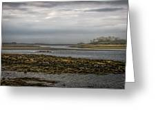 Cape Porpoise Maine - Fog On The Horizon Greeting Card