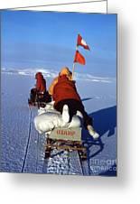 Capeevans-antarctica-g.punt-3 Greeting Card