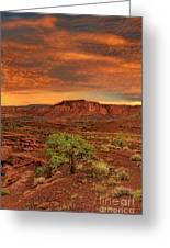 Capitol Reef National Park Utah  Greeting Card
