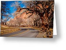 Capitol Reef Scenic Drive Greeting Card