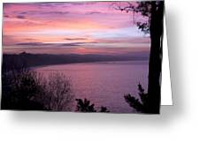 Capitola Bluffs Greeting Card