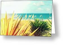 Captiva Island Photography Light Leaks Greeting Card