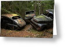 Car Cemetery In The Woods. Greeting Card
