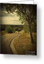 Car On Road Greeting Card by Carlos Caetano