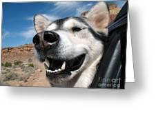 Car Ride Greeting Card