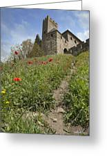 Carcassonne Poppies Greeting Card by Robert Lacy