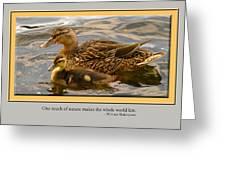 Card 1204 Greeting Card