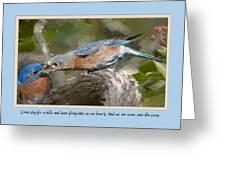 Card 2012 Greeting Card
