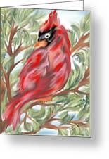 Cardinal At Rest Greeting Card