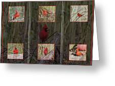 Cardinal Family Greeting Card