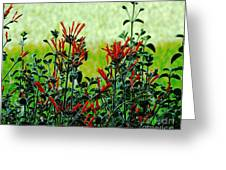 Cardinal Flowers Greeting Card