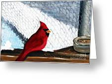 Cardinal In The Dogpound Greeting Card