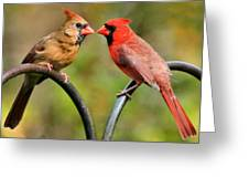 Cardinal Love Greeting Card