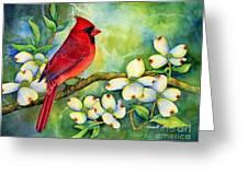 Cardinal On Dogwood Greeting Card