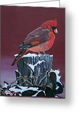 Cardinal Winter Songbird Greeting Card
