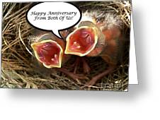 Cardinals Anniversary Card Greeting Card