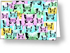 Carefree Butterflies Greeting Card