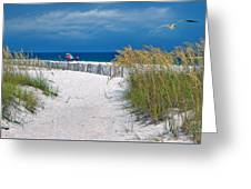 Carefree Days By The Sea Greeting Card