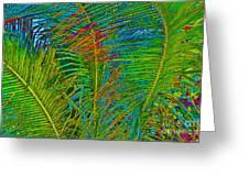 Caribbean Coconuts Greeting Card