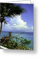 Caribbean Day Greeting Card