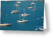 Caribbean Sailboats Greeting Card