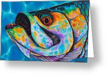 Caribbean Tarpon Fish Greeting Card