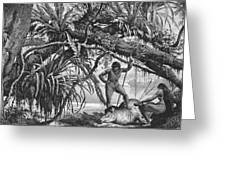 Caripuna Indians With Tapir, From The Amazon And Madeira Rivers, By Franz Keller, 1874 Engraving Greeting Card