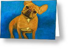 Carmen French Bulldog Greeting Card