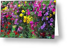 Carnival Flowers Greeting Card