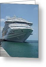 Carnival Freedom Bow Greeting Card