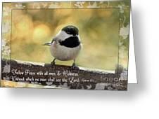Carolina Chickadee  Greeting Card