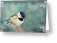 Carolina Chickadee With Decorative Frame II  Greeting Card