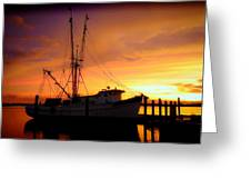 Carolina Morning Greeting Card