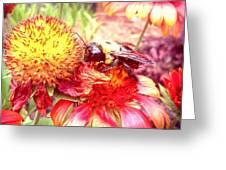 Carpenter Bee No. 4 Greeting Card