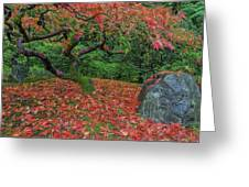 Carpet Of Fall Colors In Portland Japanese Garden Greeting Card