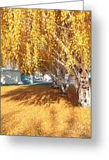 Carpet Of Yellow Leaves Greeting Card