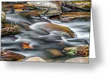 Carreck Creek Cascades Greeting Card