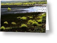 Carretera Austral River Greeting Card by Arie Arik Chen